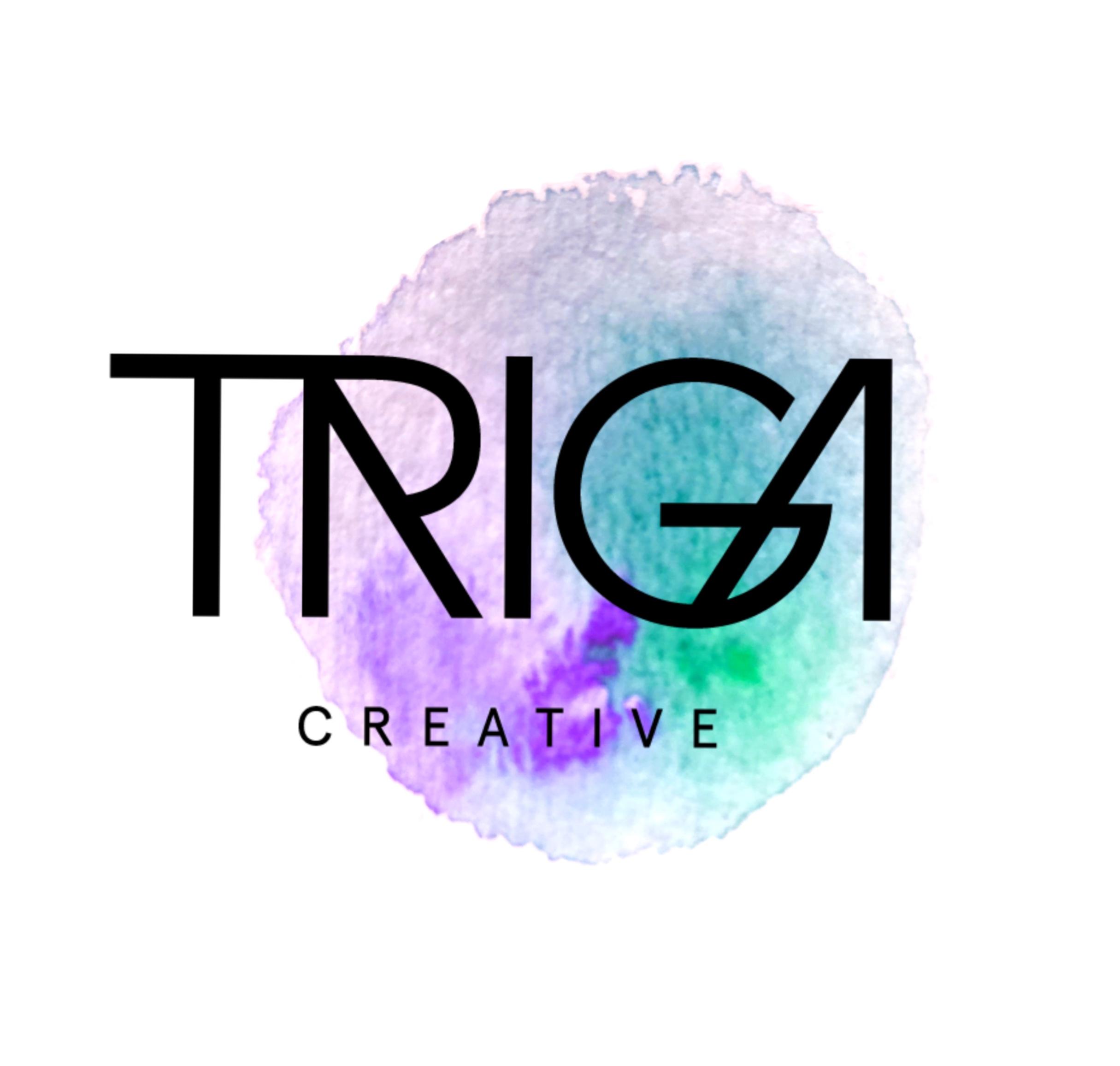 Triga Open Studio