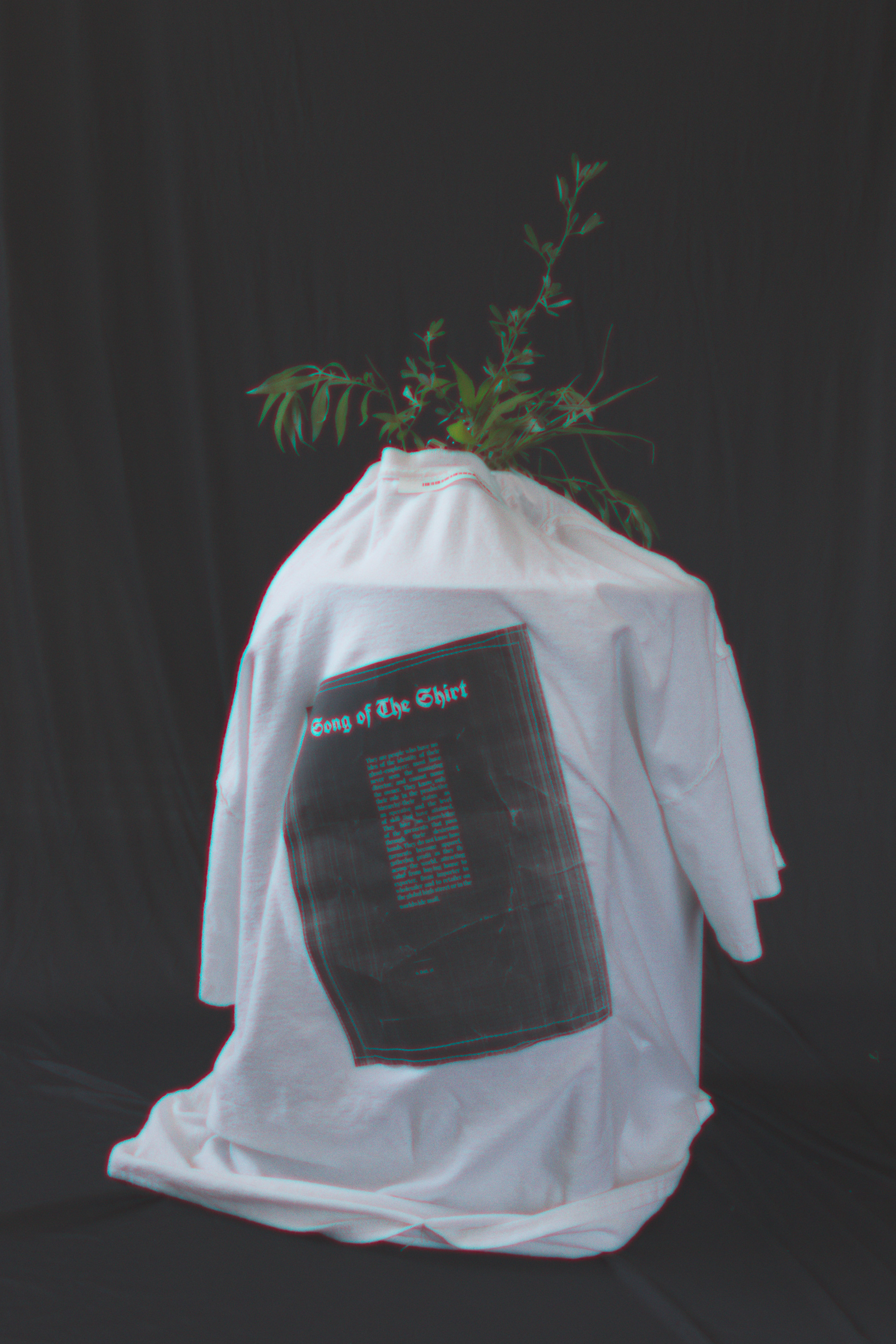 song of the shirt